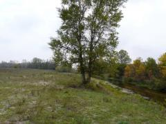 25 acres on the banks Aurelie