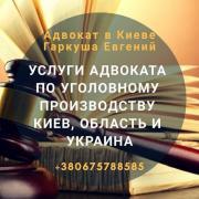 Адвокат в Киеве по уголовным делам