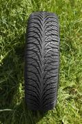 Зимние шины Шины 175/65 R14 Domin-Grip. Производитель ПОЛЬША